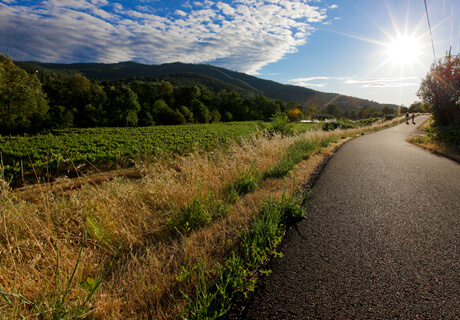Ashland Oregon Bike Riding